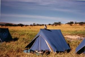 Kenia 1988 (Masai Mara)50